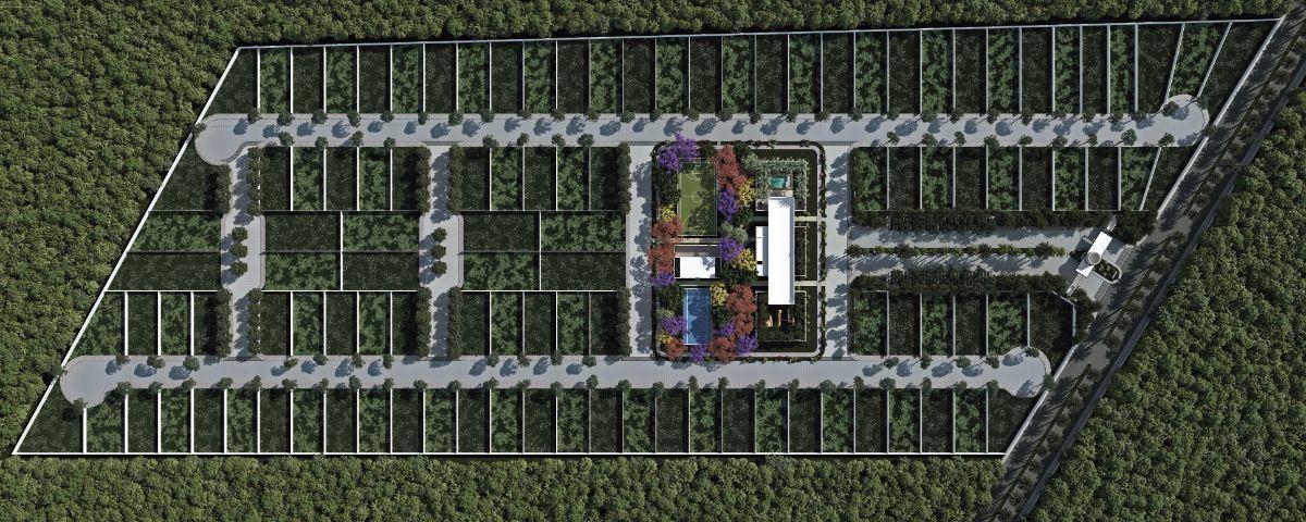 3 de 6: Vista Area