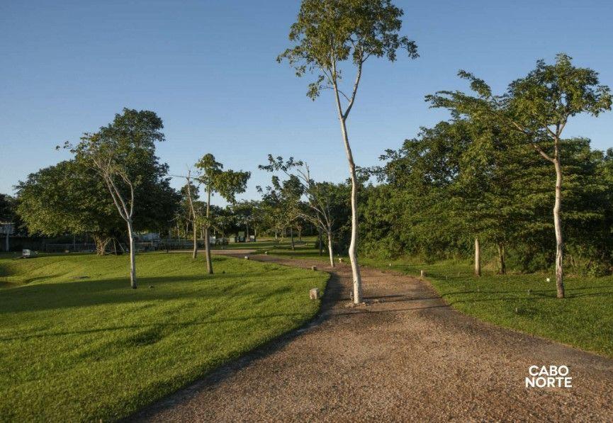 7 de 18: Areas verdes