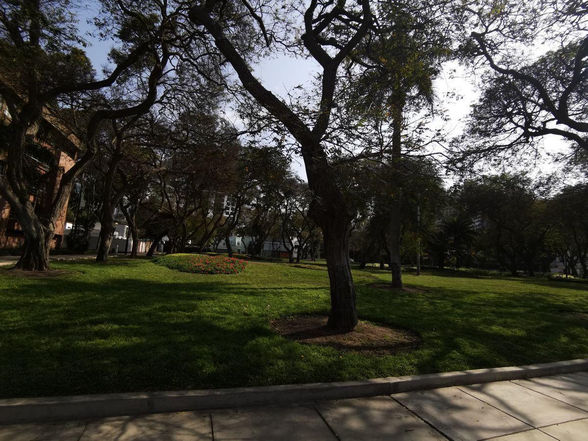 7 de 11: Parque Roosevelt