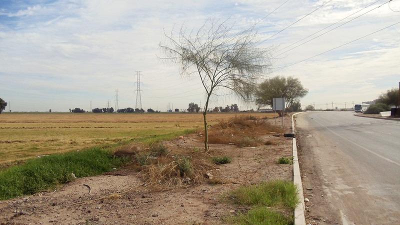 3 de 5: Terrenos en Venta en Gonzalez Ortega Mexicali PBVSJV45