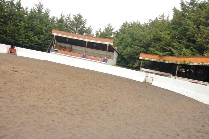 3 de 31: Arena Taurina
