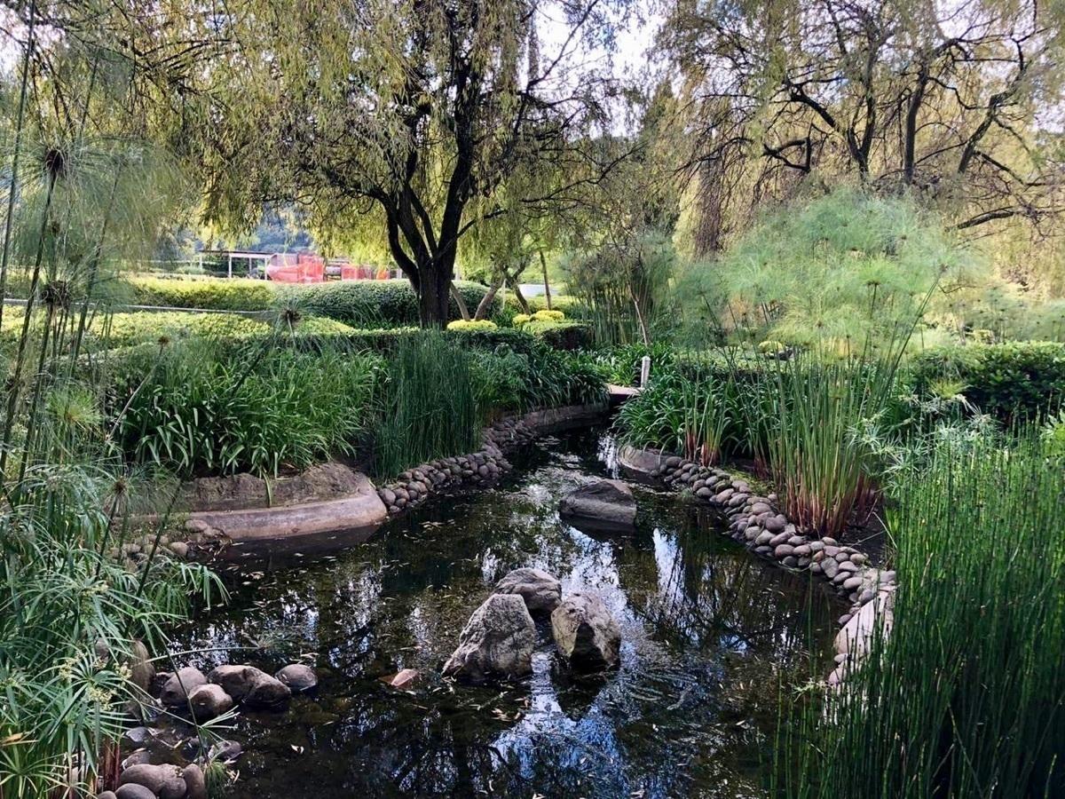 29 de 37: Río corriente en jardines