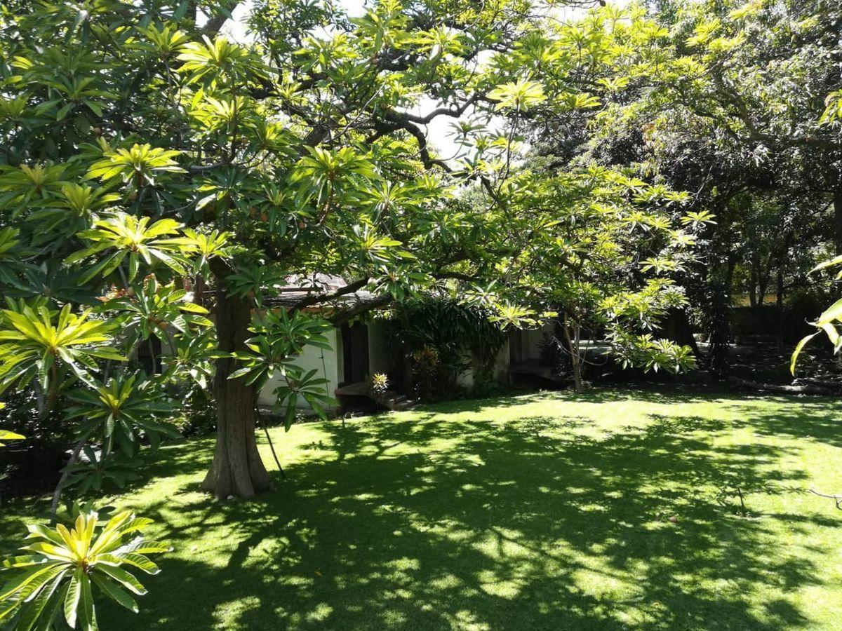 15 de 16: Jardín de 3400 mts aproximadamente, con arboles frutales.