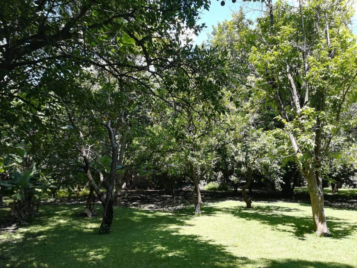 16 de 16: Jardín con gran variedad de árboles.