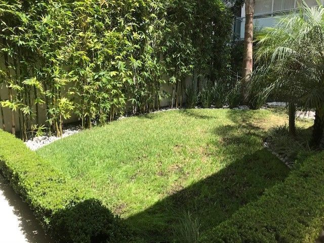 36 de 48: jardincito común