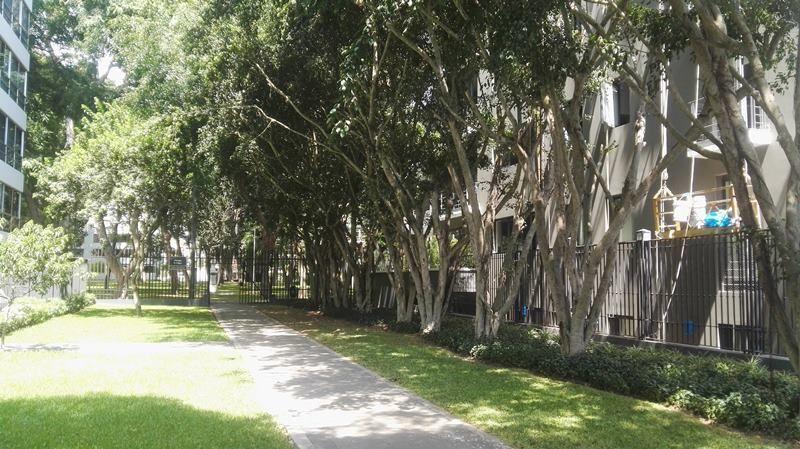 29 de 31: Ingreso al parque a pasos del edificio