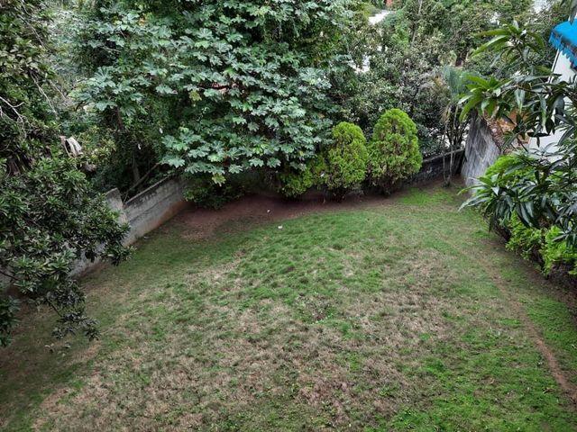 17 de 18: Jardín