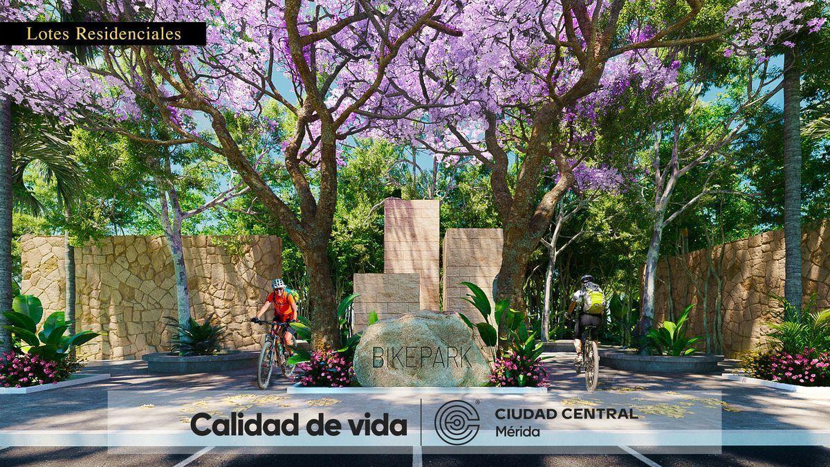 5 de 15: Bike Park