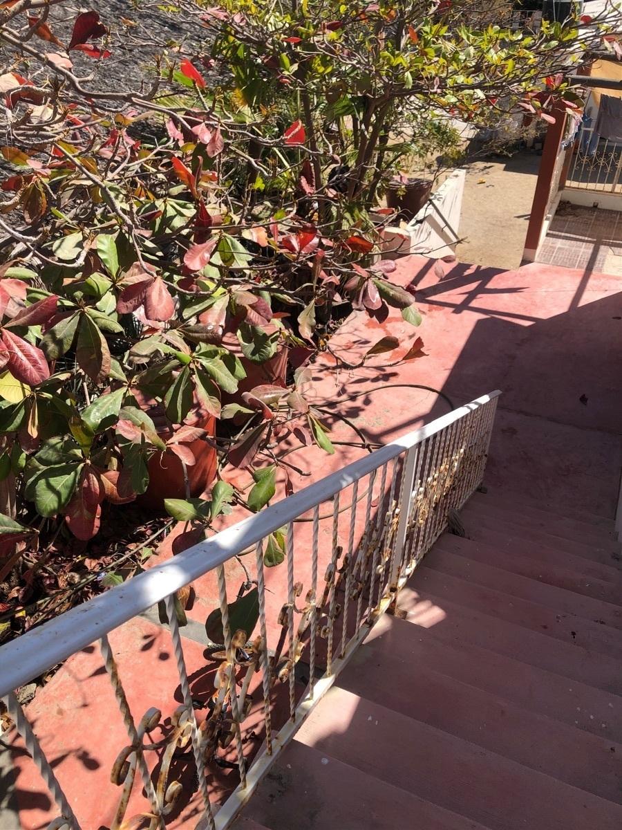 5 de 11: Escaleras para terraza.