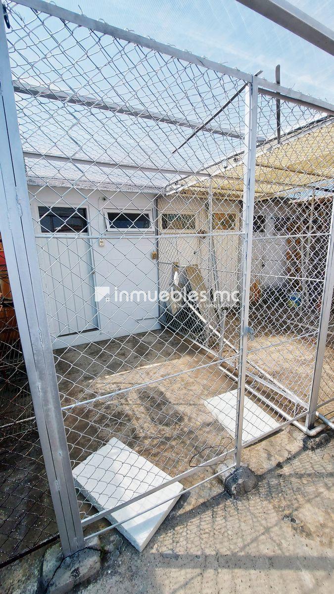 16 de 20: área de lavado y jaula tendido