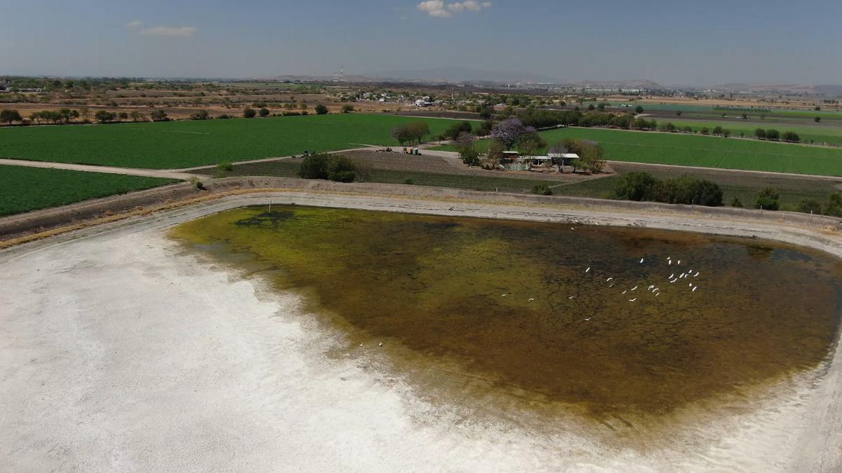 1 de 9: Bordo de agua artificial de gran capacidad.