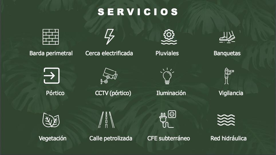 5 de 10: Casa en venta Una Planta Privada Canaria