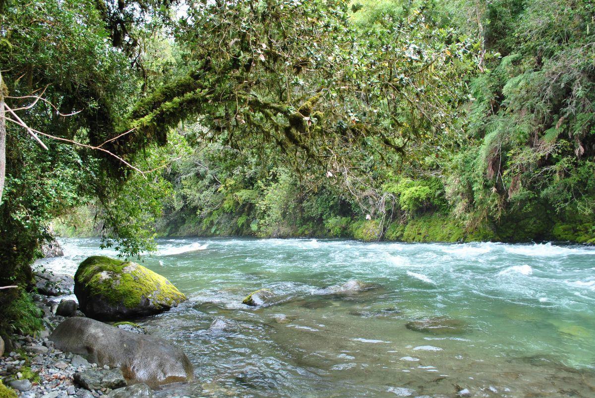 1 de 14: Río Chihuio.