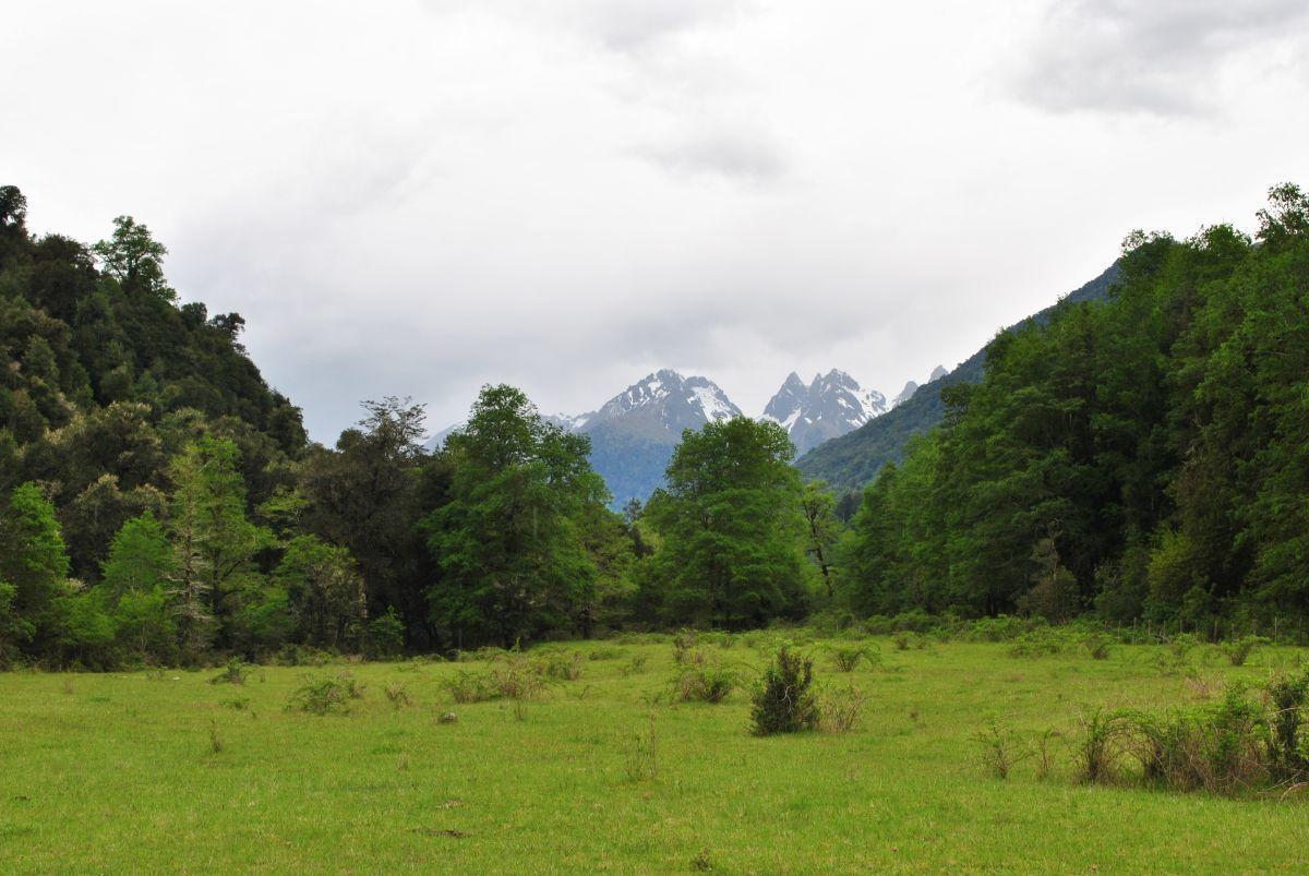 2 de 14: Los Cuernos de Chihuio, Cordillera .