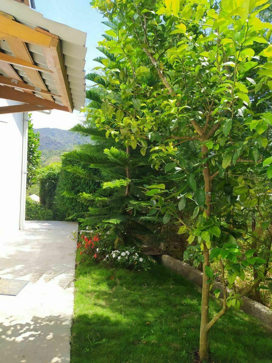 17 de 34: Jardín