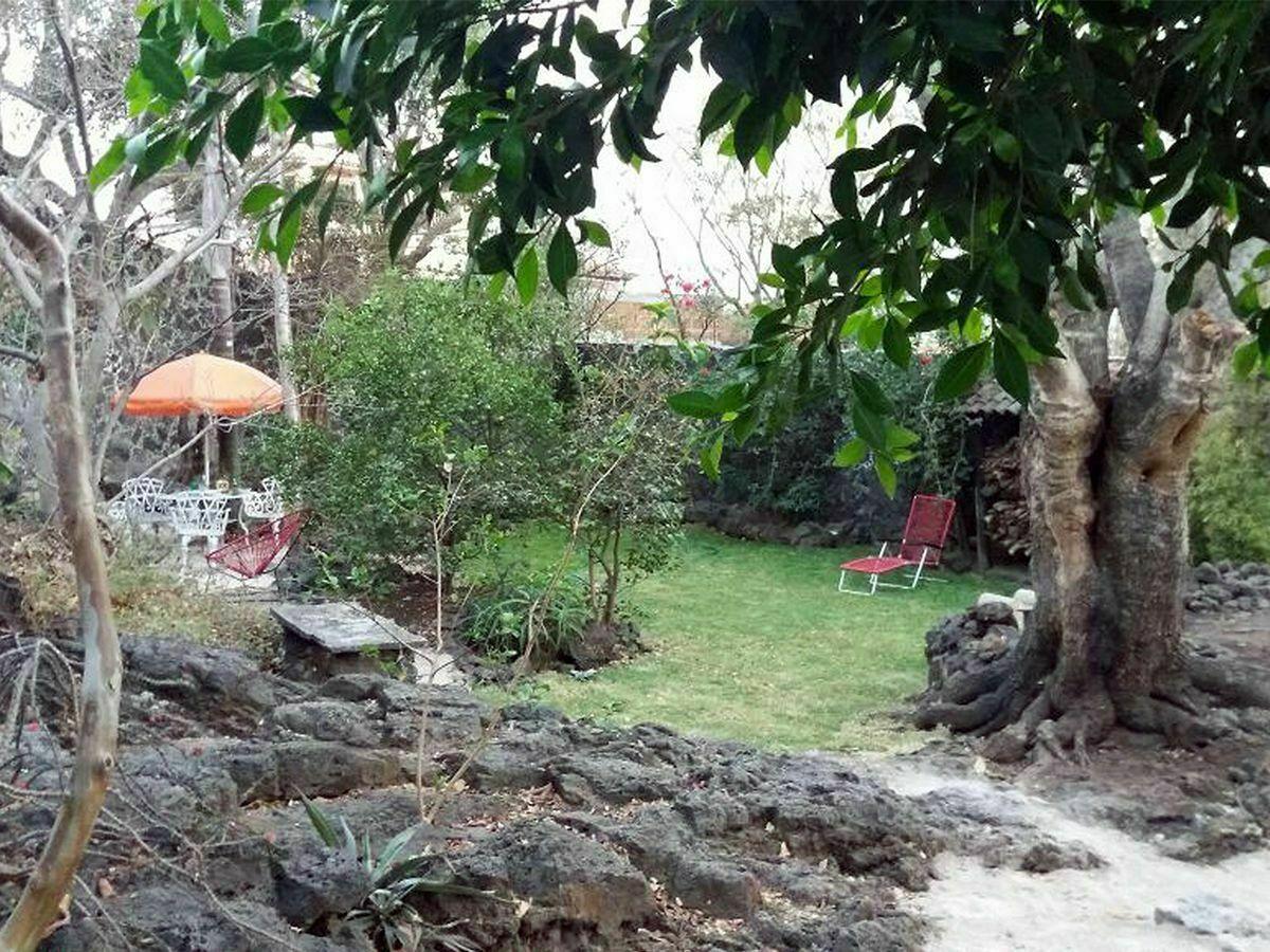 3 de 9: Jardín