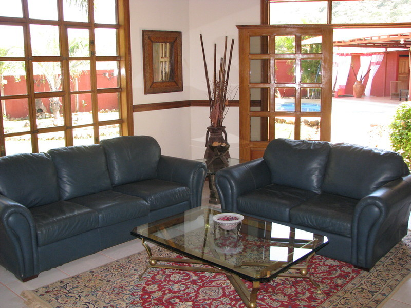 24 of 45: Featuring persian rug , brass  table & Italian leather couch