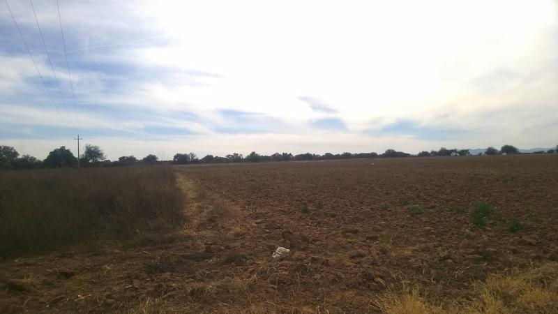 2 de 8: Vistas del Rancho