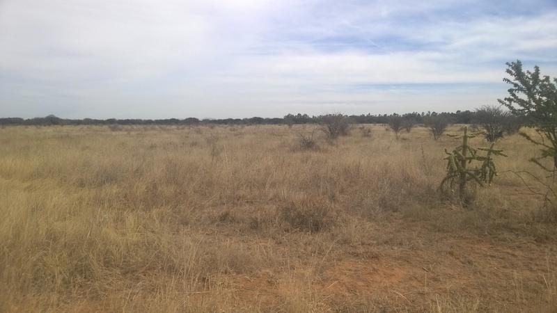 4 de 8: Vistas del Rancho