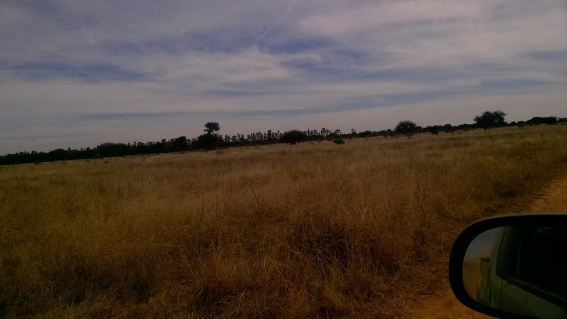 5 de 8: Vistas del Rancho