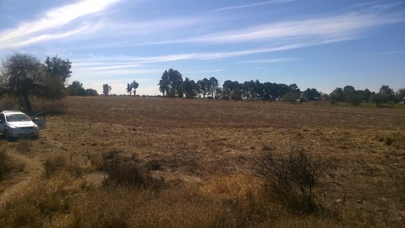 5 de 8: Panorámicas del Rancho