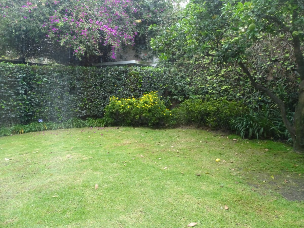 28 de 42: jardín con tamaño muy disfrutable