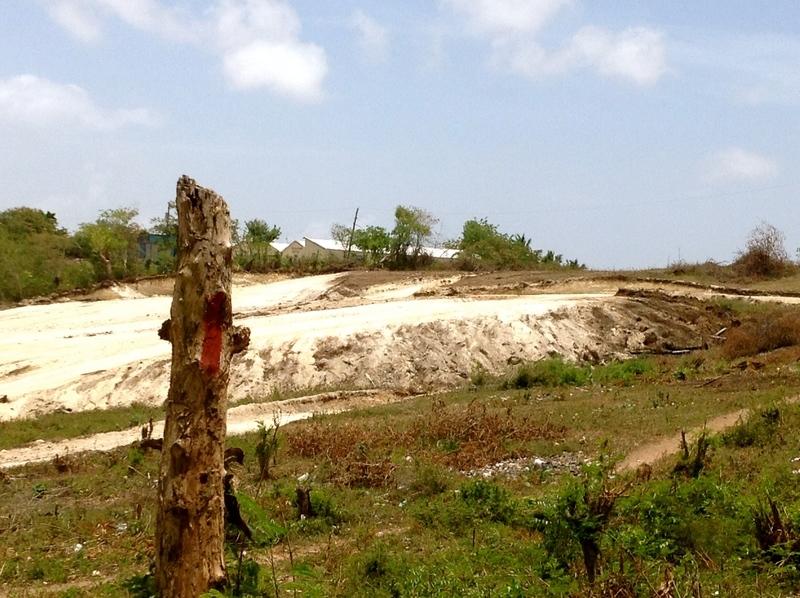 12 de 34: Desarrollo Urbanístico del Sector / Camino a la propiedad