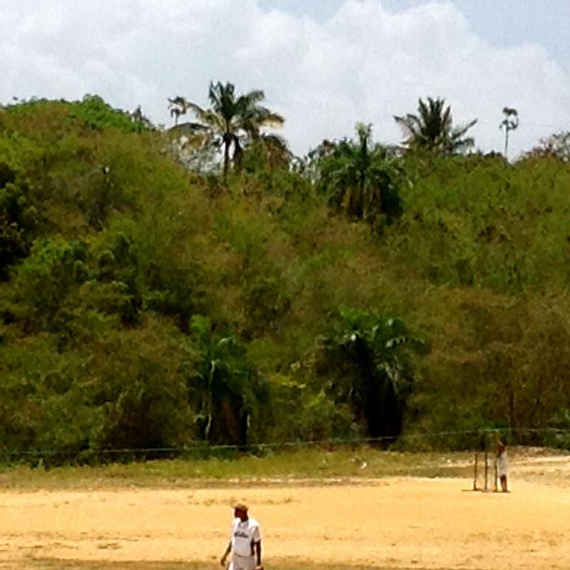 10 de 34: Imagen del terreno en Venta