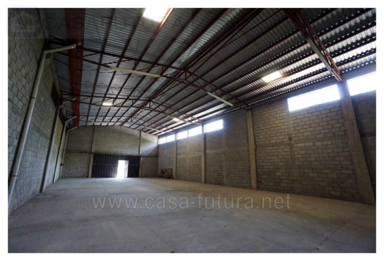 6 de 19: Interior 1  (500 m2)