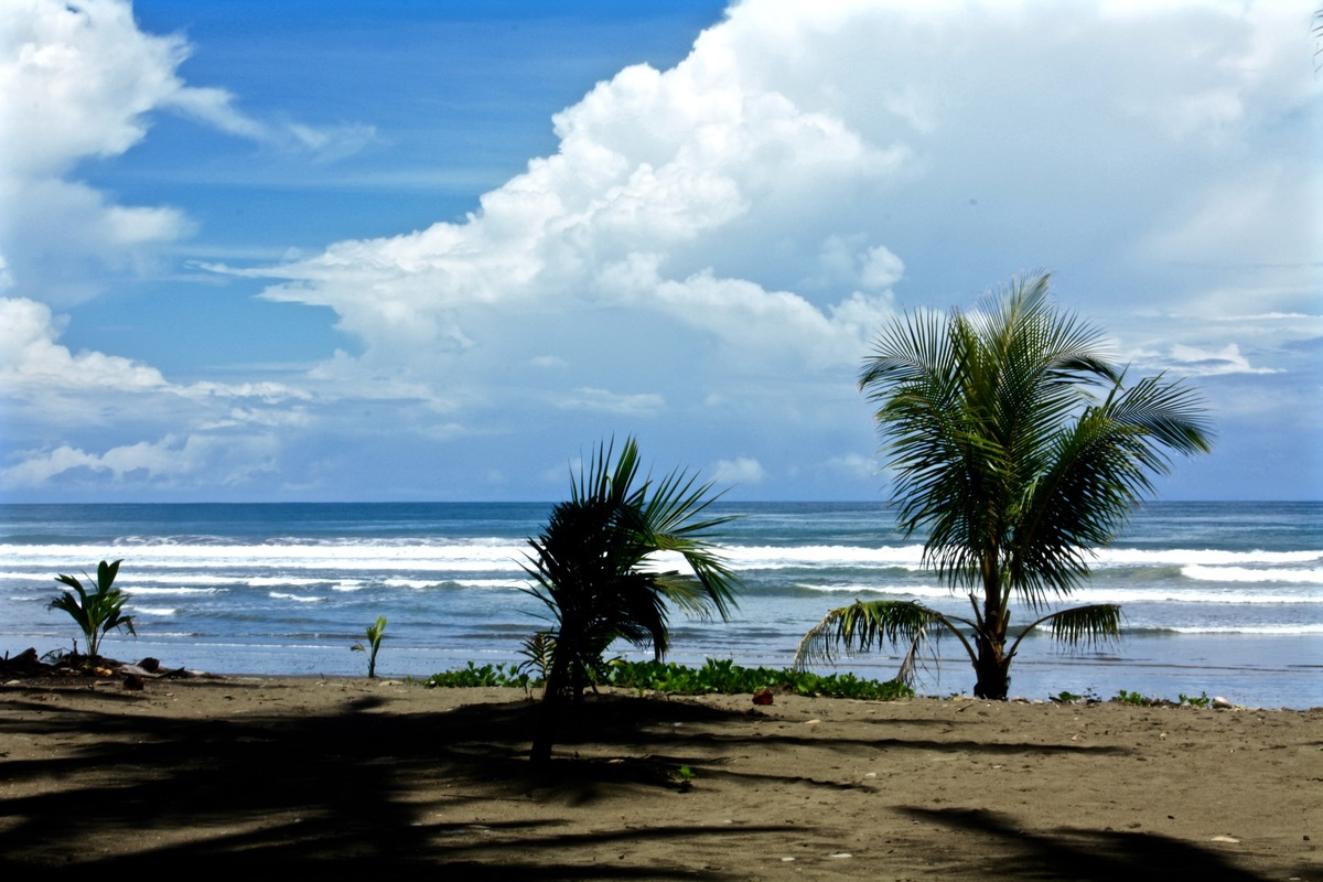 14 of 14: Playa Dominical - beautiful!
