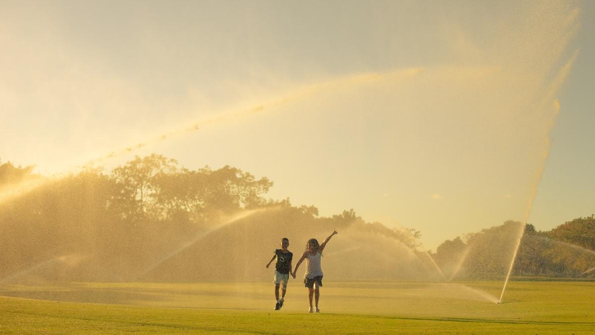 26 de 31: Golf
