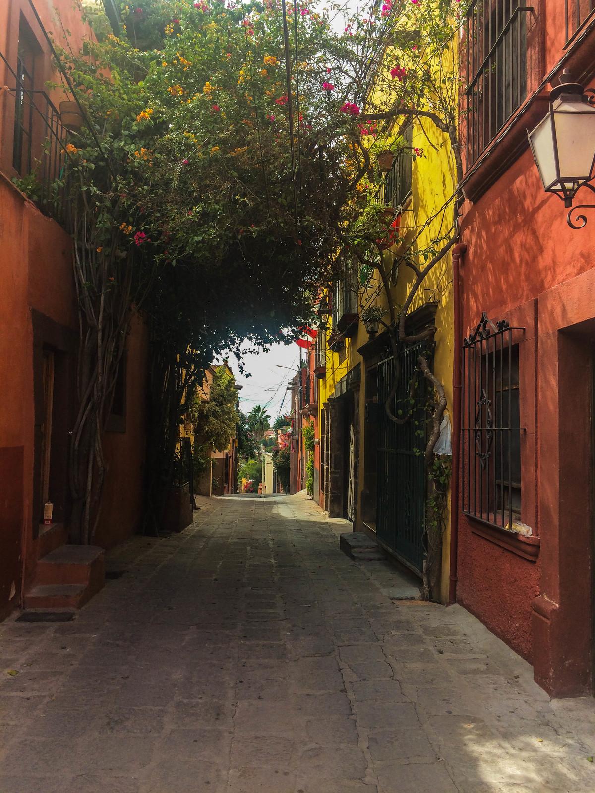 4 of 7: Te gustaría vivir en este callejón.