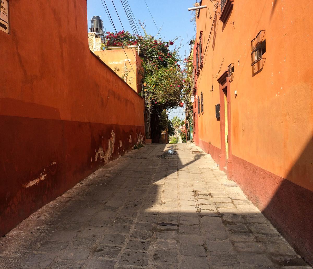 3 of 7: Llenos de color y flores así son los callejones de la ciudad