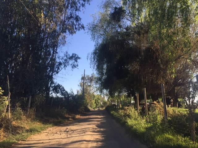8 de 50: Camino hacia Condominio San José del Estero