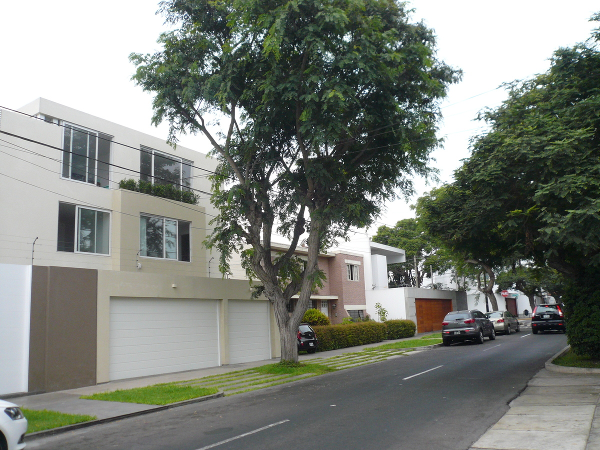 6 de 11: Linda calle tranquila con muchos árboles y casas alto valor