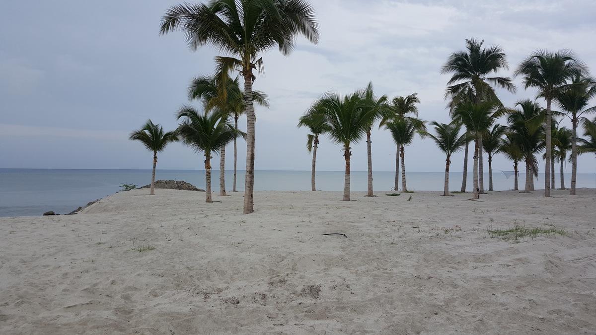 2 de 4: La playa al frente de Punta arena
