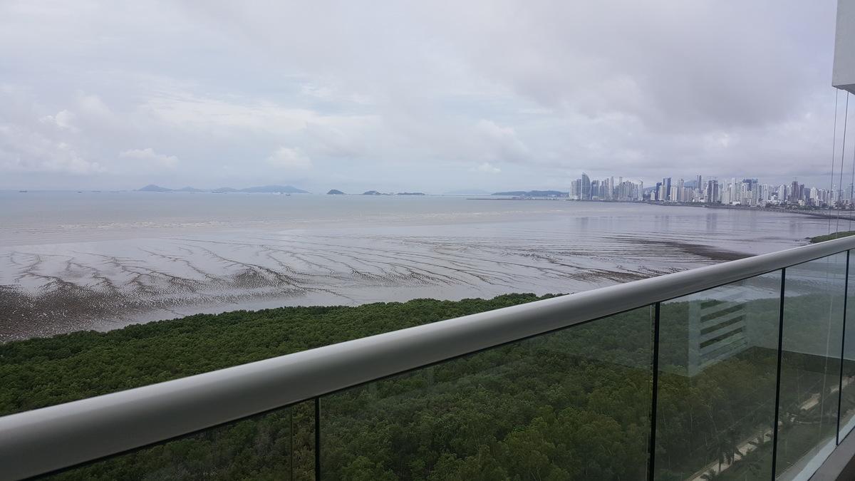 10 de 29: Vista desde la terraza