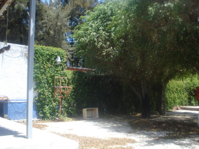 10 de 25: Jardín