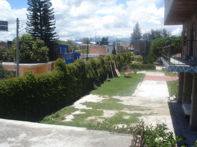 24 de 25: Vista a los jardines