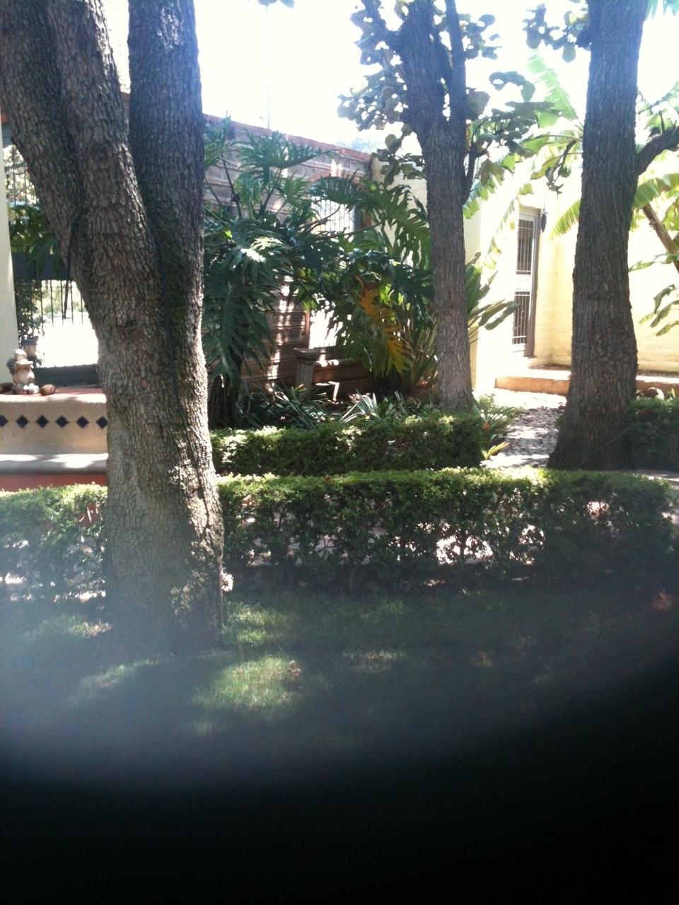 4 de 13: Jardín