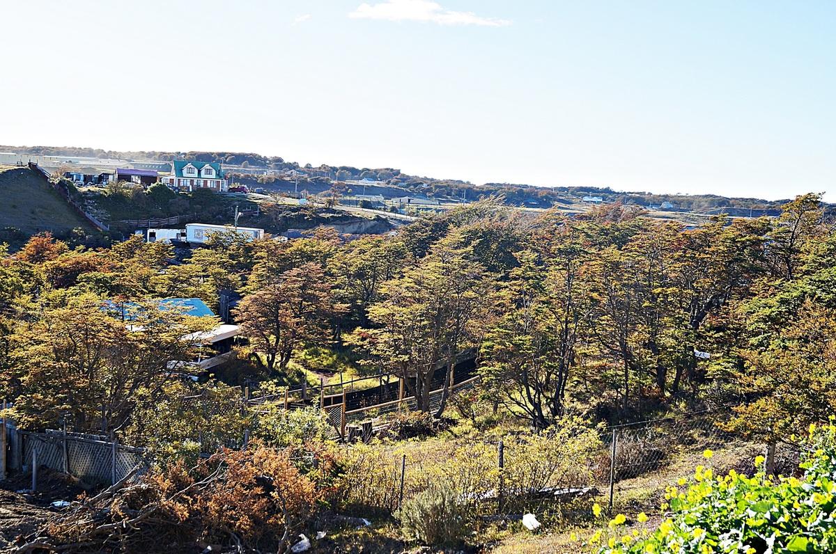 44 de 47: Vista del entorno natural del Condominio y Vecinos