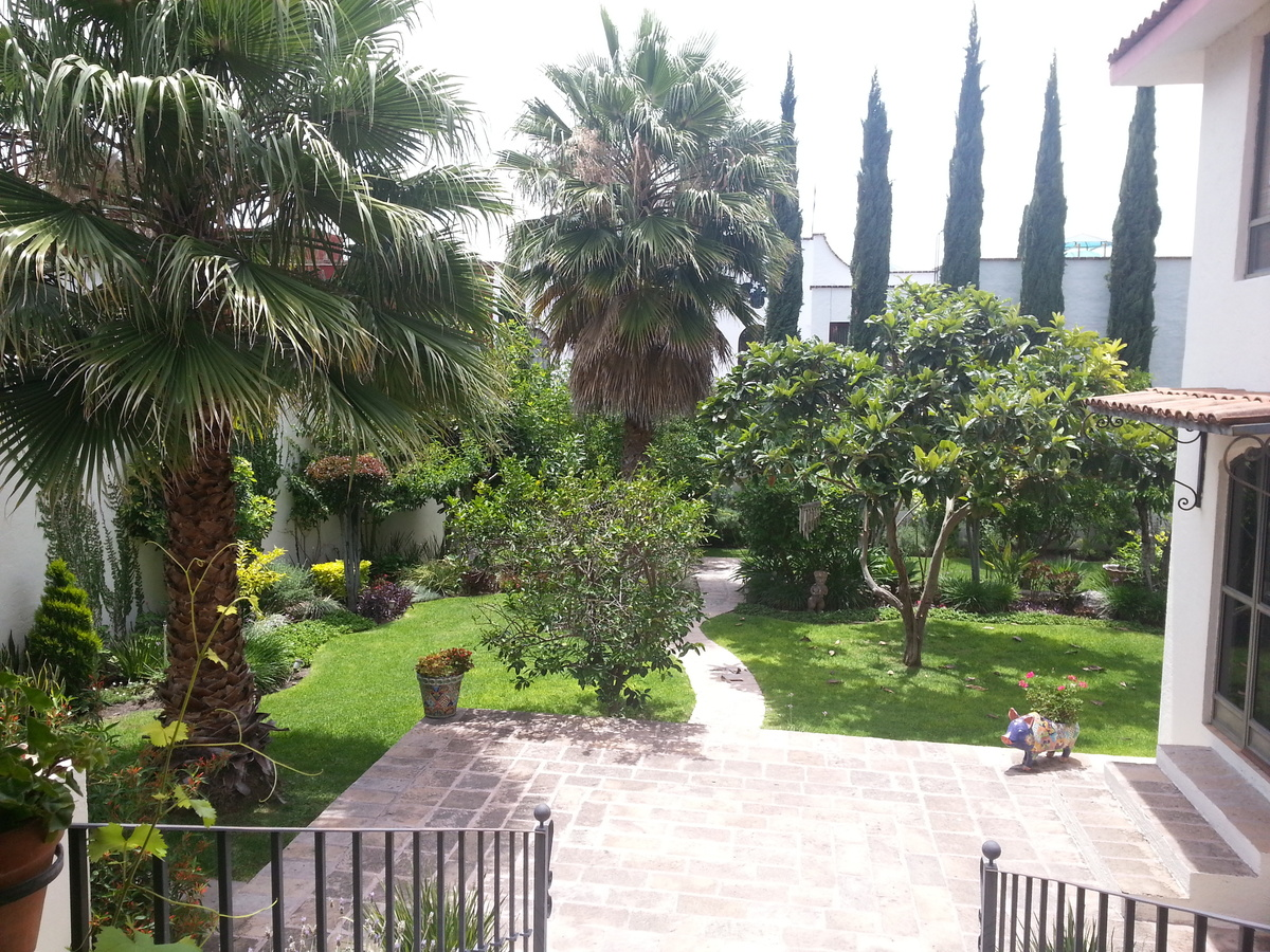 8 of 11: Large garden with mature fruit trees