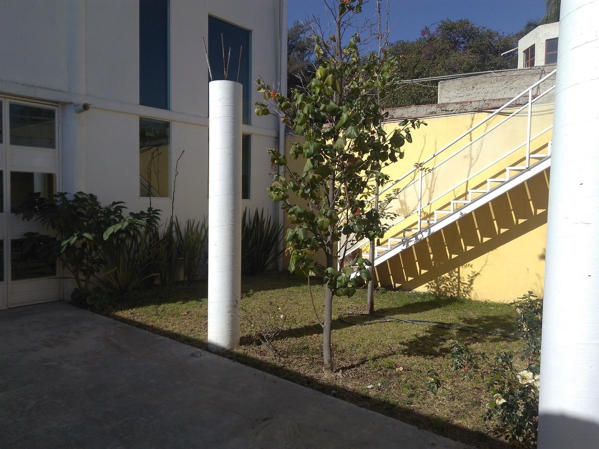 10 de 19: Área de crecimiento, actualmente jardin