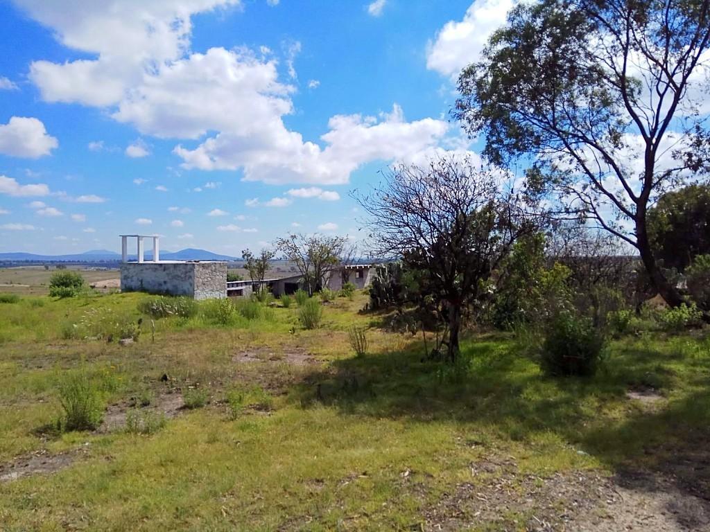 4 de 12: Parte Trasera de la Casa y Vista de Rancho lindero