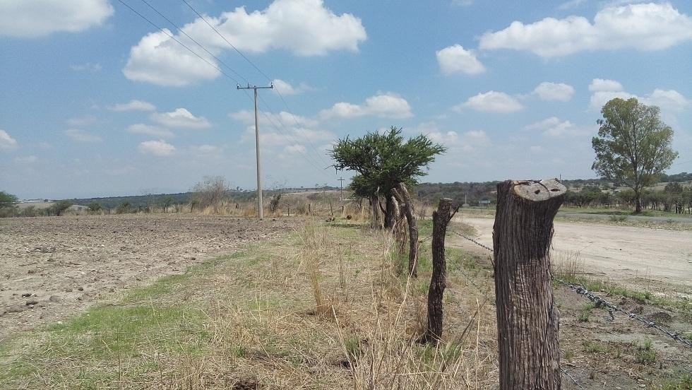 6 de 16: Camino vecinal a San Gaspar de los Reyes y una de las colind