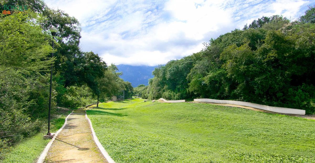 6 de 14: Áreas Verdes, andadores y Vita-Pista