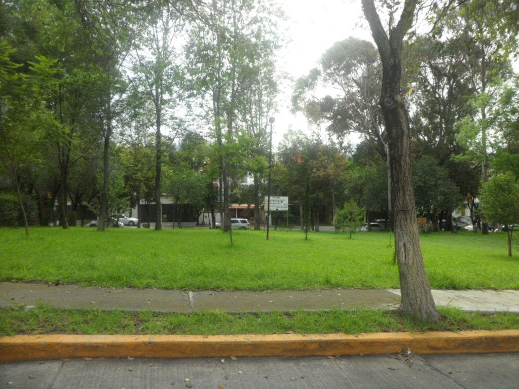 31 de 33: Parque secundario en la siguiente calle