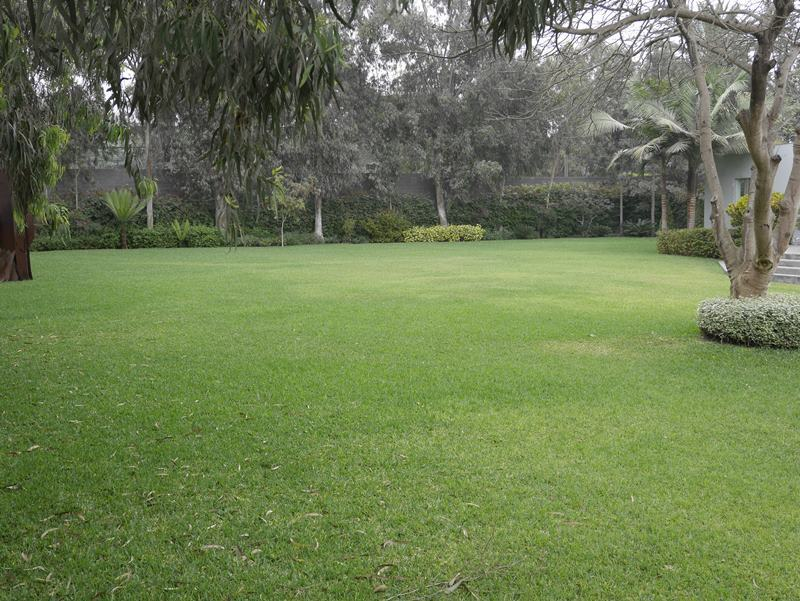 2 de 41: Gran jardín y paisajismo increíble