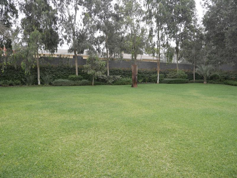 14 de 41: Gran jardín y paisajismo increíble