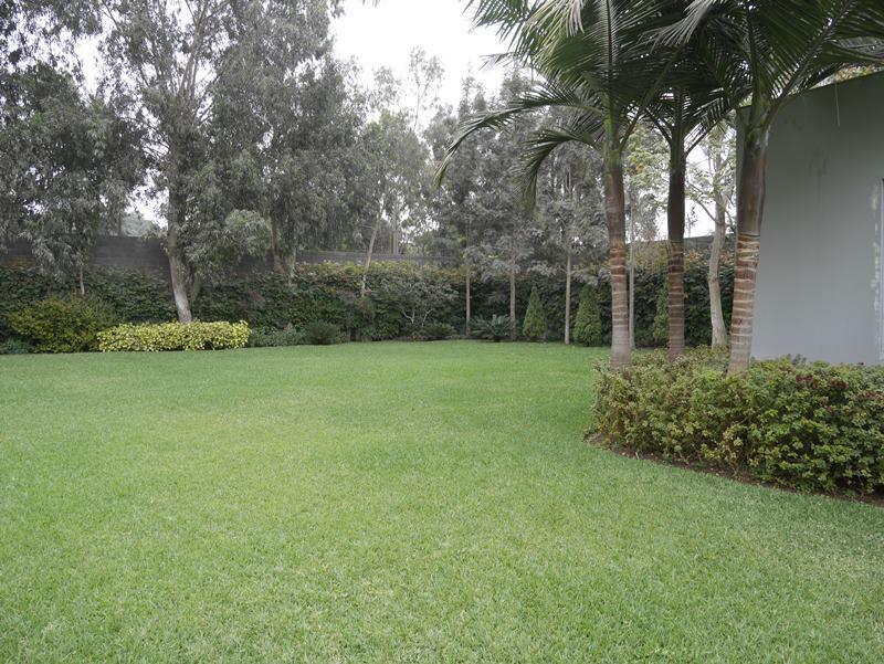 16 de 41: Gran jardín y paisajismo increíble